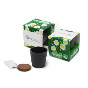 Ceramic Grow Kit