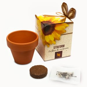 Flower Showbox