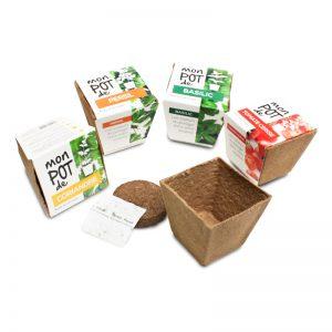 Biodegradable Pot