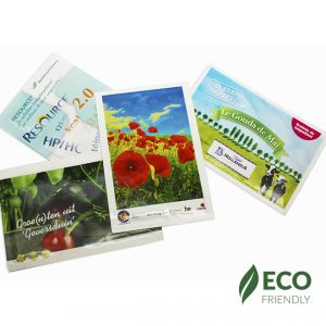 Printed Seed Packets - 101x150mm copy